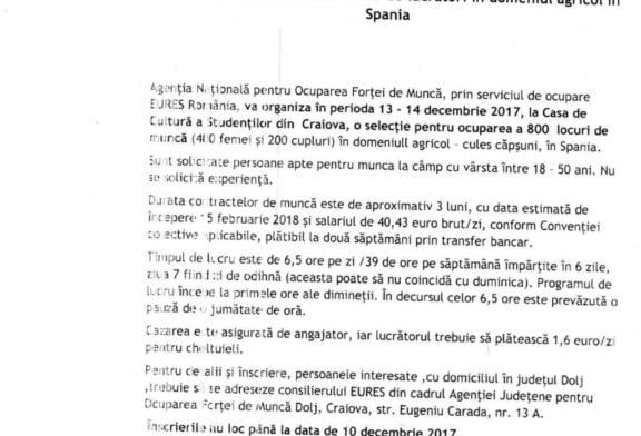 Selecție pentru recrutarea a 800 de lucrători în domeniul agricol în Spania