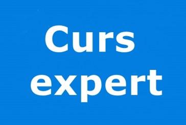 Curs expert