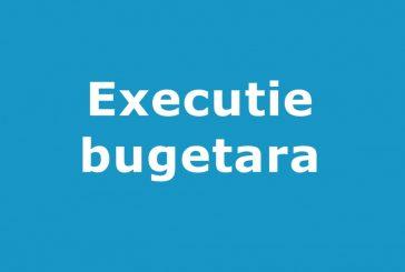 INDICATORI EXECUTIE BUGETARA TRIM.II 2019