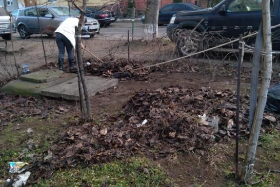 Primăria municipiului Calafat a continuat astăzi activitățile de curățenie a zonei din cartierul Cobuz (Mogador)